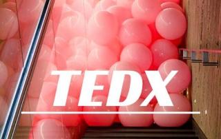 TedX Rennes explications et vidéos