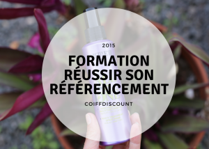formation referencement à rennes