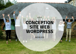 conception site web wordpress pour elorys