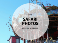 image une safari photos teambuilding rennes nantes