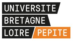 Université Bretagne Loire Pépite